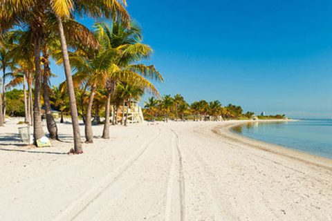TURISMO:El sector de viajes y turismo fue testigo de una disminución del 3,7%