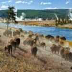 Los cinco parques nacionales más populares durante la pandemia